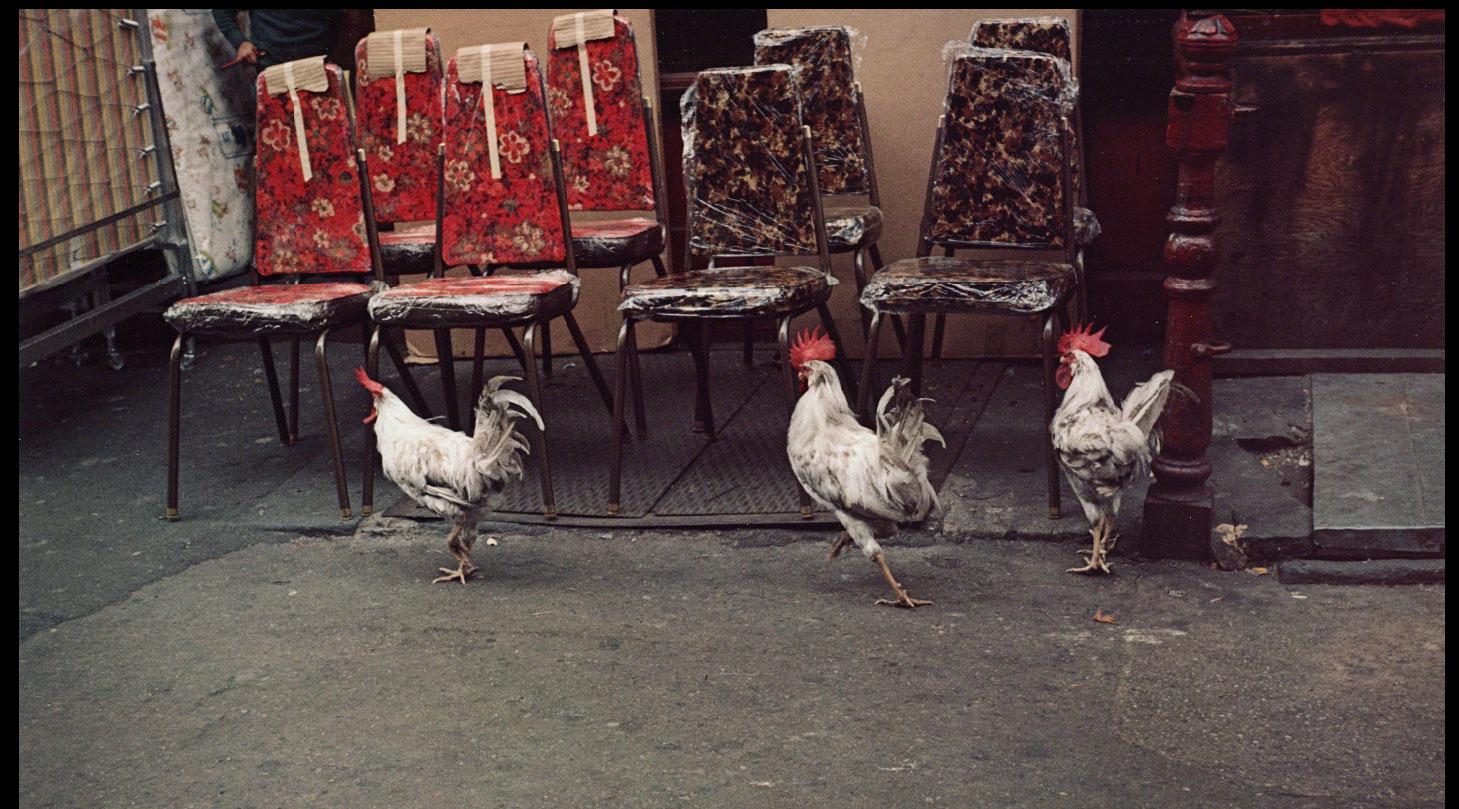 Helen Levitt, fotografía de las calles de Nueva York.